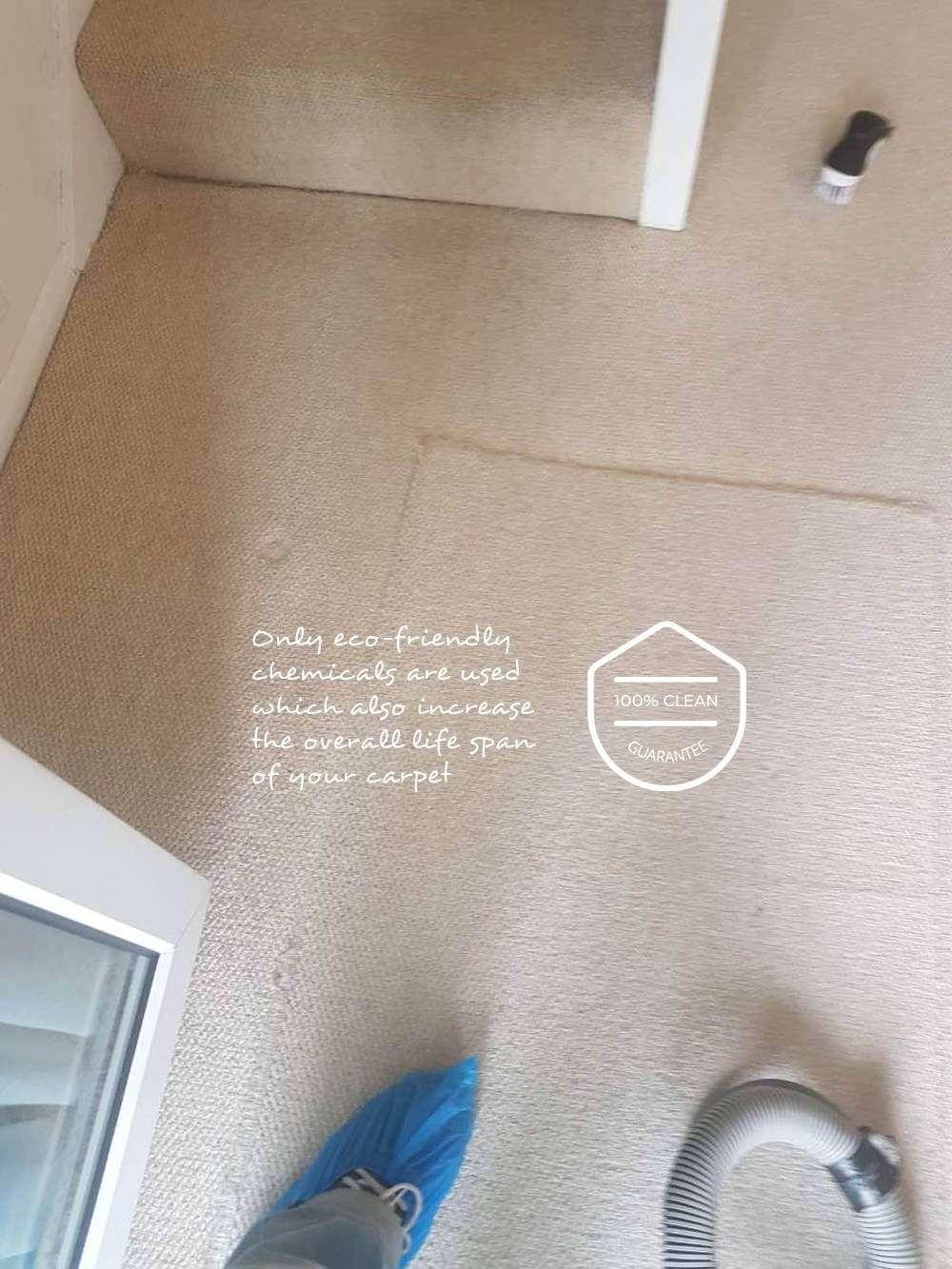 Carpet Cleaning Byfleet Kt14 Eva Cleaners