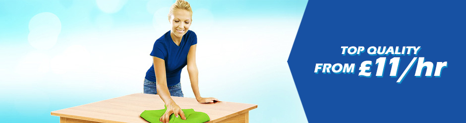 Domestic Cleaning Cleaners London Domestic Cleaner Service