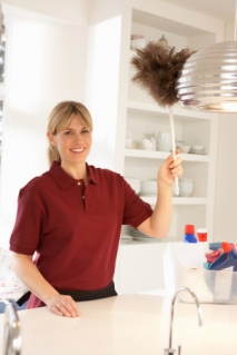 Green Cleaning Items that you Should Always Have in the House