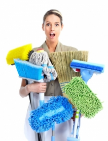 Minimizing The Fuss Of Domestic Cleaning